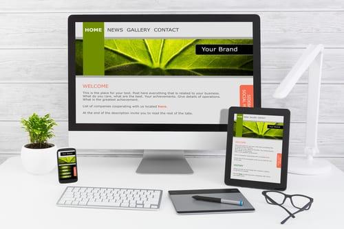 website cost 2016